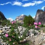 Das Hushe Tal auf dem Gondogorola Trek