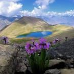Der Rush Lake