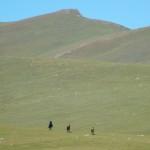 Das Hochland von Kirgistan-ideal zur Pferdezucht