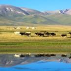 """Modernes"" nomadisches Leben in Kirgistan"