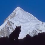 Der Spantik Peak