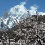 Ultar (7.388 m) und Lady Finger Peak (6.000 m)